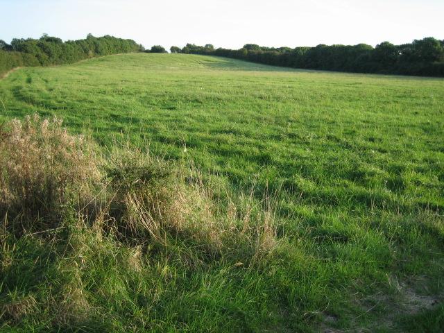 Field near Blackthorn Hill