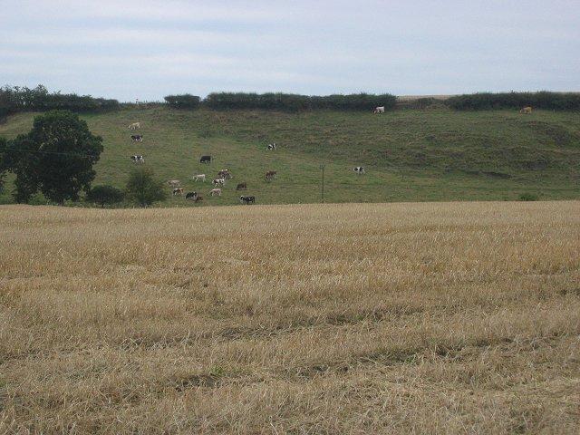 Farmland, Hillend.