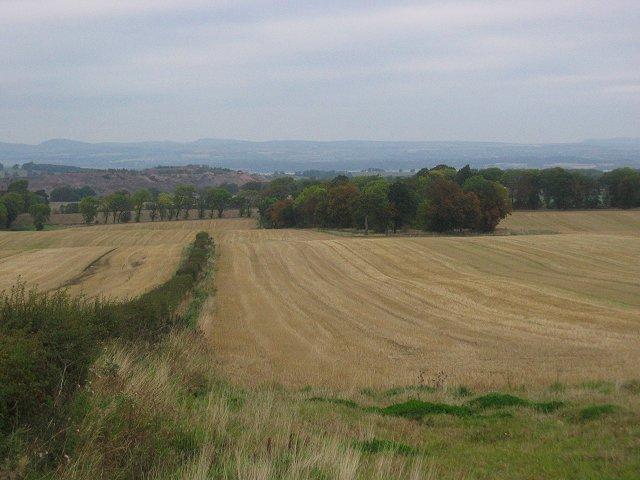 West Lothian Stripes.