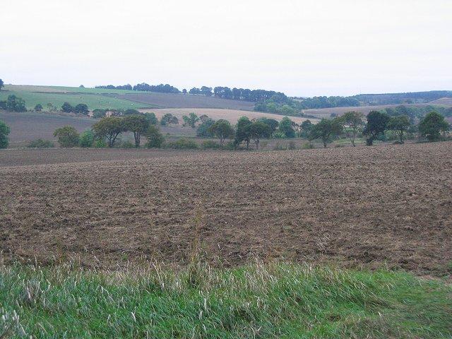 Farmland, Little Ochiltree.