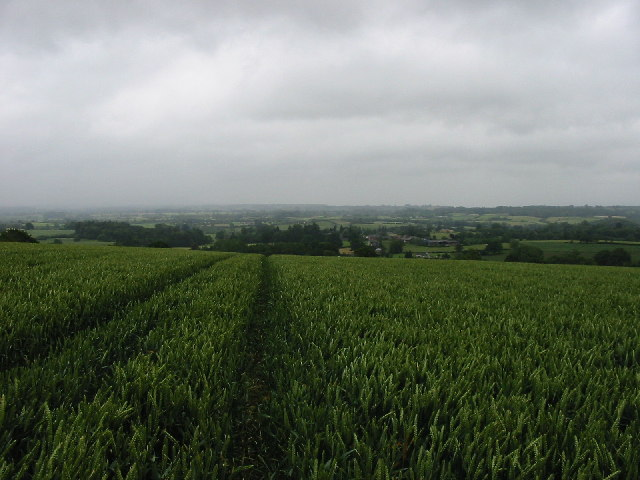 Herefordshire Trail between Green Lane Farm and Titley