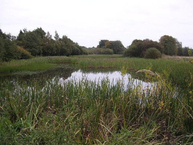 Dougalston Loch