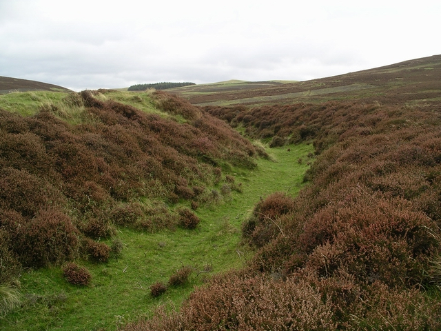 Hill fort, Tinto hill