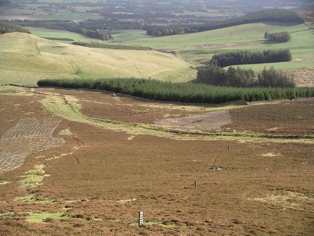 Plantations, Kirk Burn, Tinto Hill