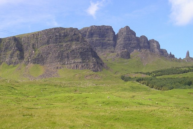 Pasture below the Storr, Skye