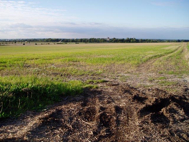 Farmland near Fulbourn