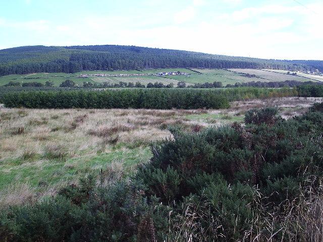 Looking Towards Wester Achnacloich Farm