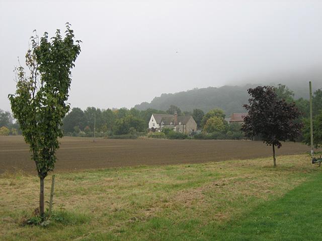Bengrove