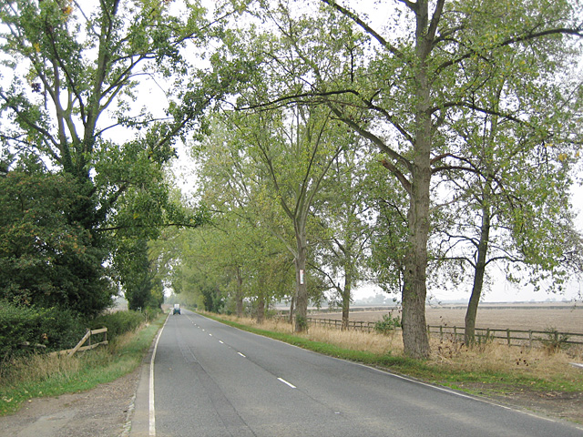 Avenue on the A435