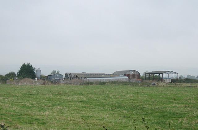 Pamington Fields