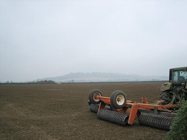 Fields near Pamington
