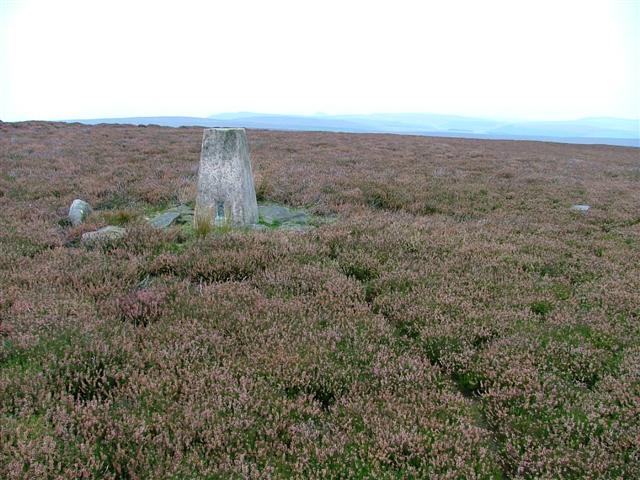 Trig. Point, Great Hograh Moor