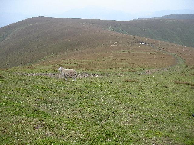 Col on the ridge between Stybarrow Dodd and Watson's Dodd