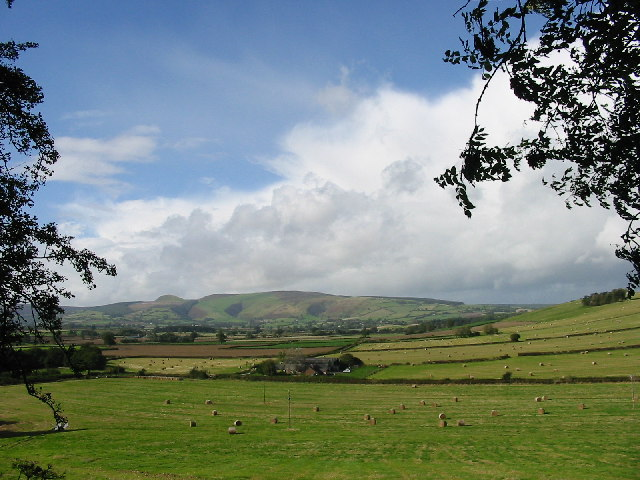 Field next to Offa's Dyke