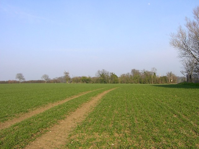 Essential Suffolk countryside in early spring