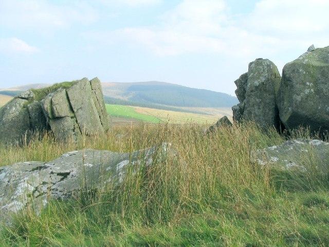 Large rocks on the slope of Foel Eryr