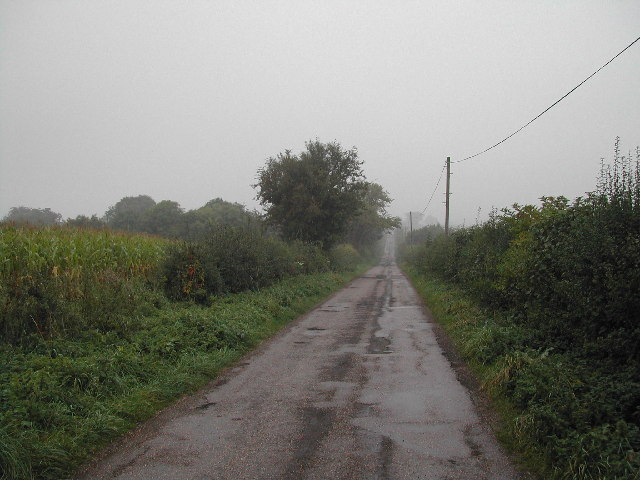 Estate road to Dilliner Wood Farm