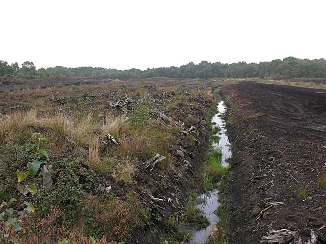 Peat workings