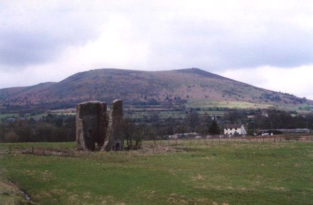 Ruin, Shelve