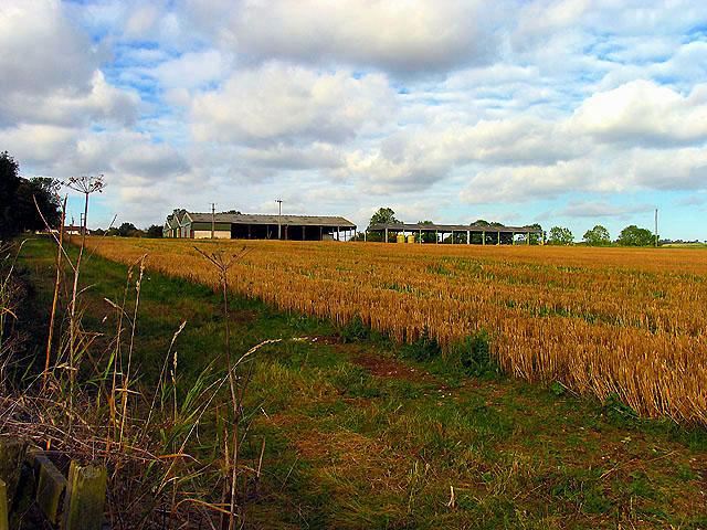 Manor Farm near Linkenholt