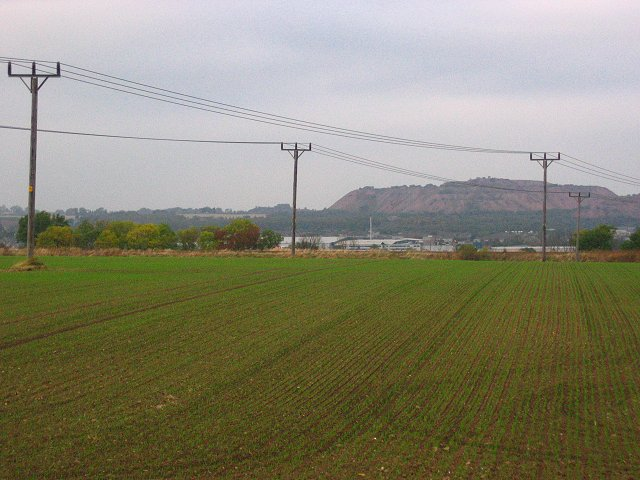 Newly sown crops, Muirend.