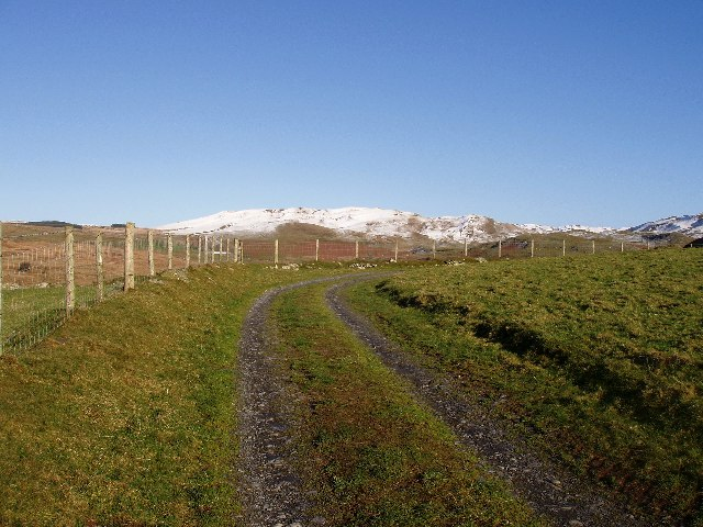 Frongoch farm track