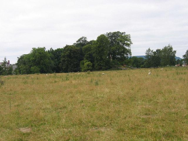 Motte and Bailey, Kingsland