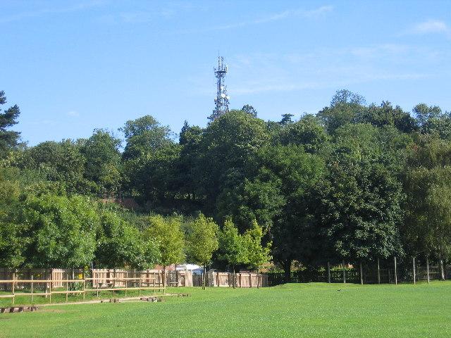 Radio Mast, Campion Hills