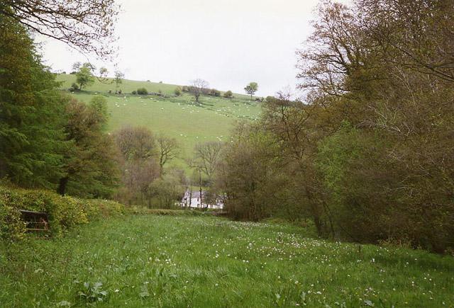 Bampton: near Raddington