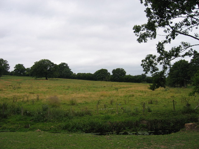 Rowe Ditch