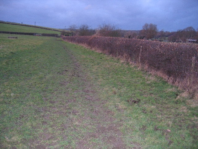 Path across farmland