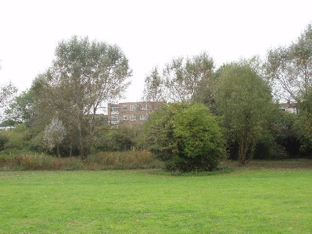 Quainton Street Open Space, Neasden