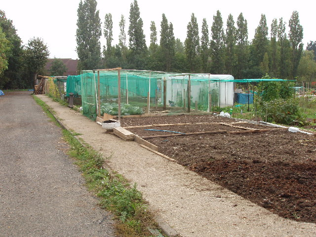 Welsh Harp Allotments