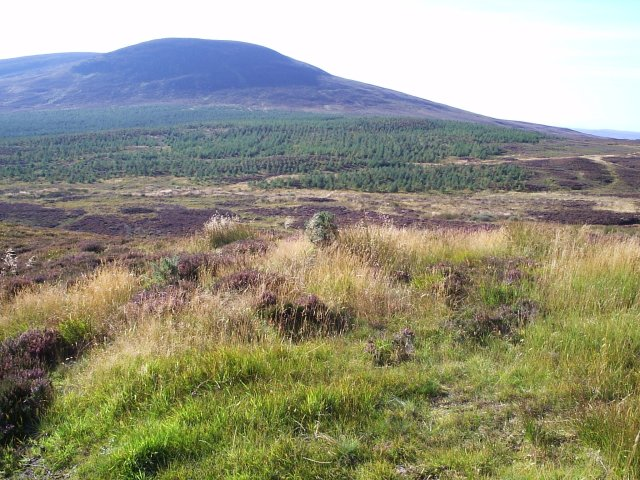 Looking over towards Cnoc na Gamhna