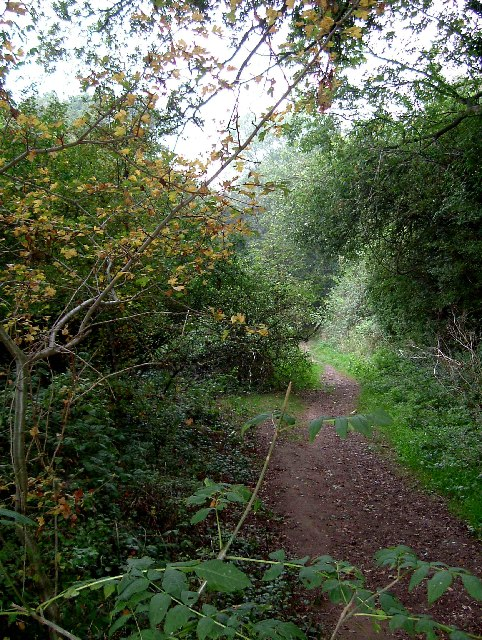 Footpath to Clay Hill Rd