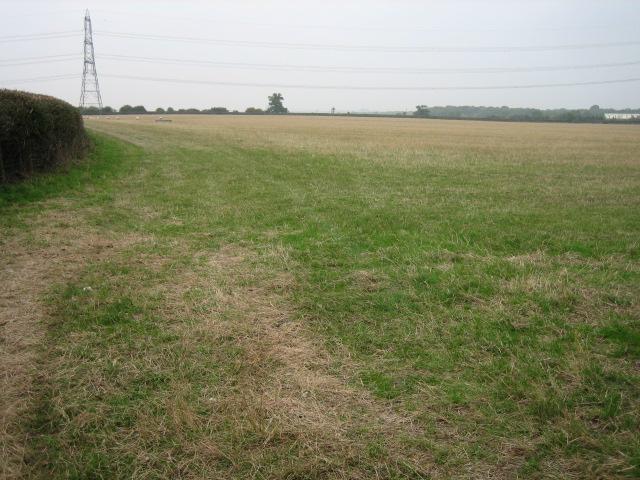 Field looking towards Lawn Farm