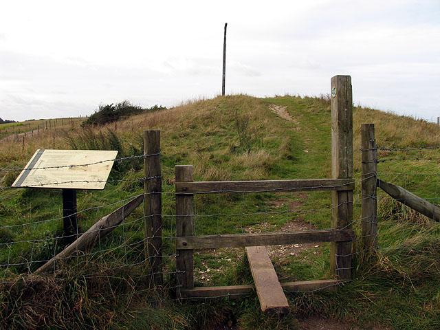 Longbarrow on Gallows Down