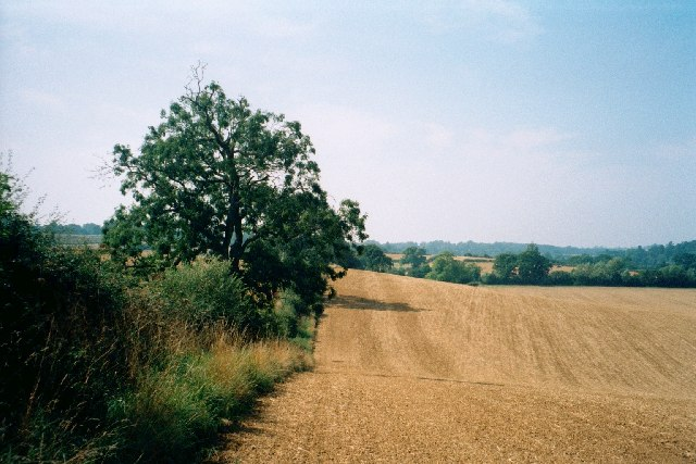 Field boundary near Great Tew