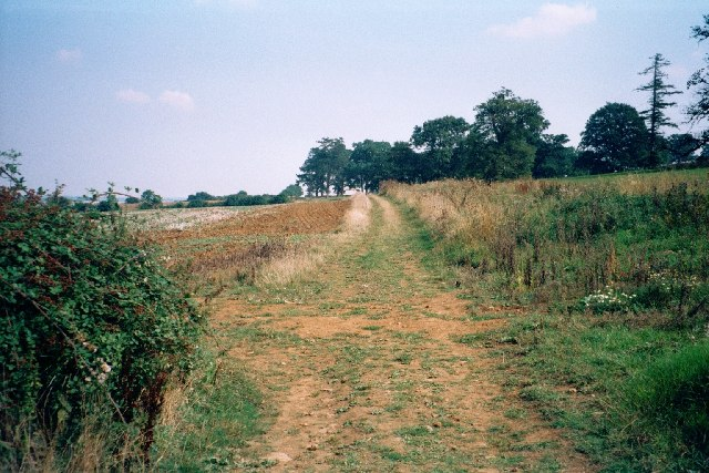 Path to Great Tew