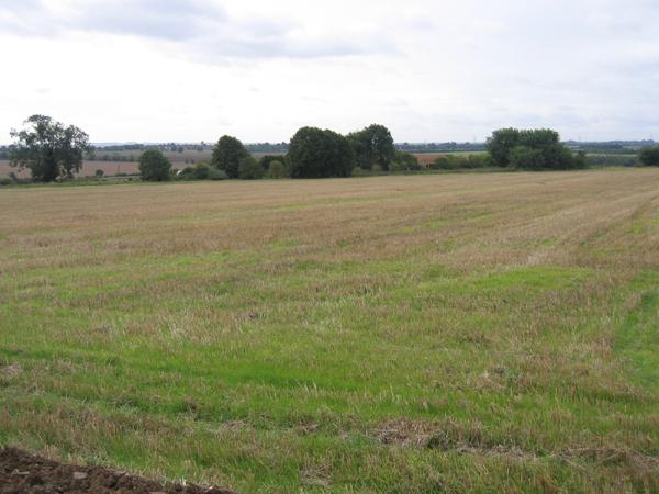 View towards Havannah Farm, Sutton, Beds