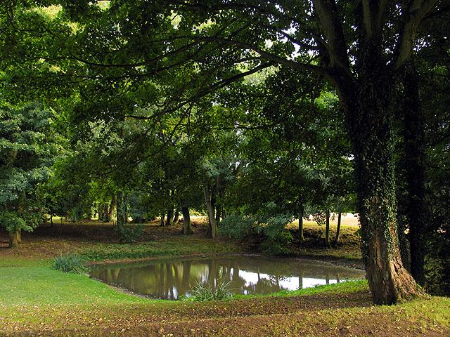 Faccombe Village Pond