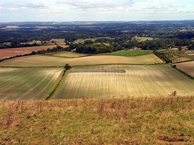 Fields near East Woodhay