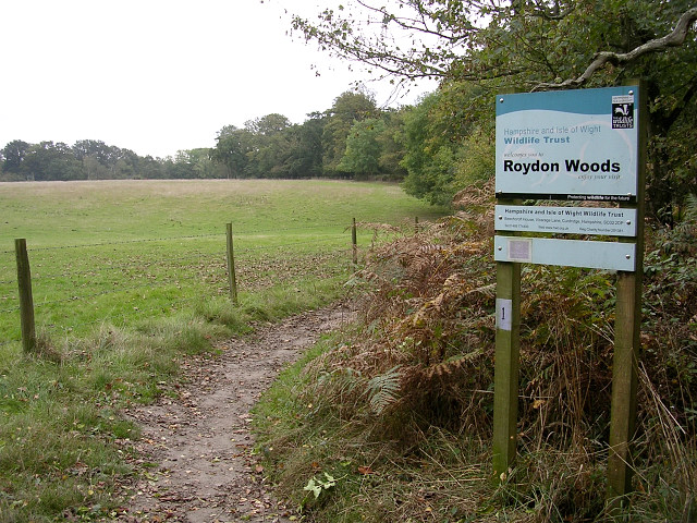 Bridleway entering Roydon Woods from the north, New Forest