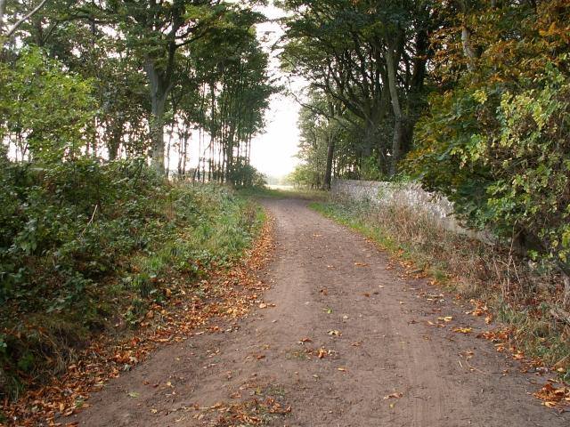 Farm track and wall at Kilconquhar