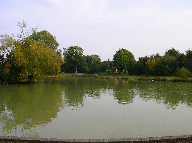 Hailsham Common Pond