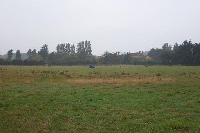 Village cricket pitch