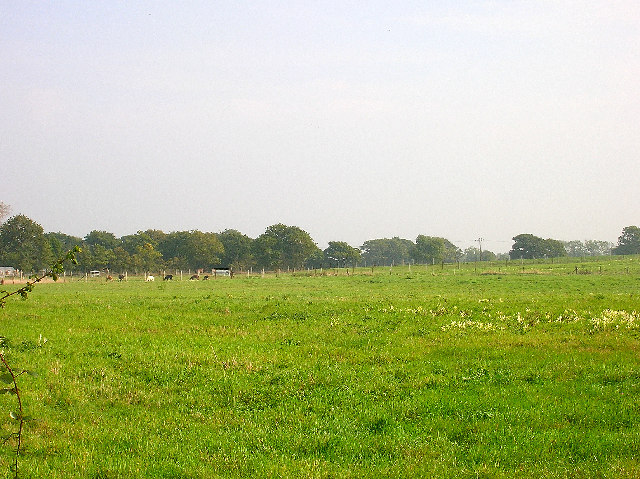 Farmland, Coldharbour Road