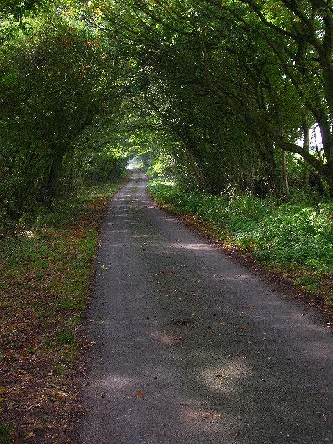 Sheepcote Lane, near Chalvington