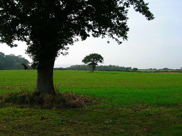 Farmland near Berwick Station