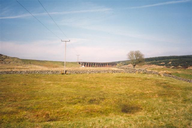 Rough Pasture, Dromore